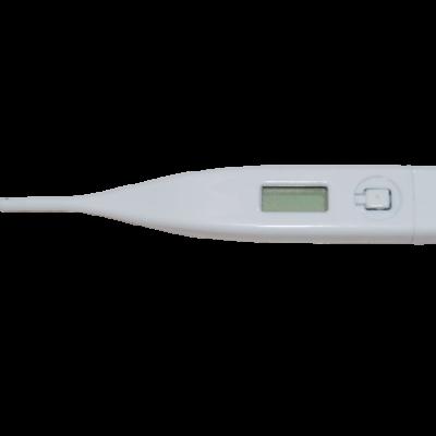 thermometre digitale